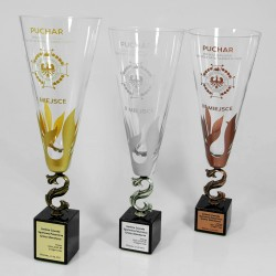 Puchar szklany sportowy