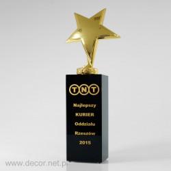 Bronzová soška - Soška so striebornou liatinou - ocenenia v bronze