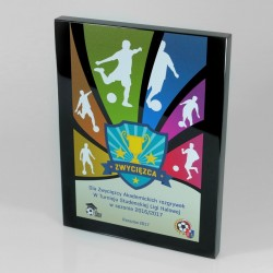 Diploma plaque