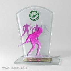 Award mit einem Skifahrer...